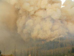 Heftige rookontwikkeling bij een bosbrand - foto door Forest Service Northern Region, Missoula, MT, USA